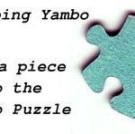 Developing Yambo